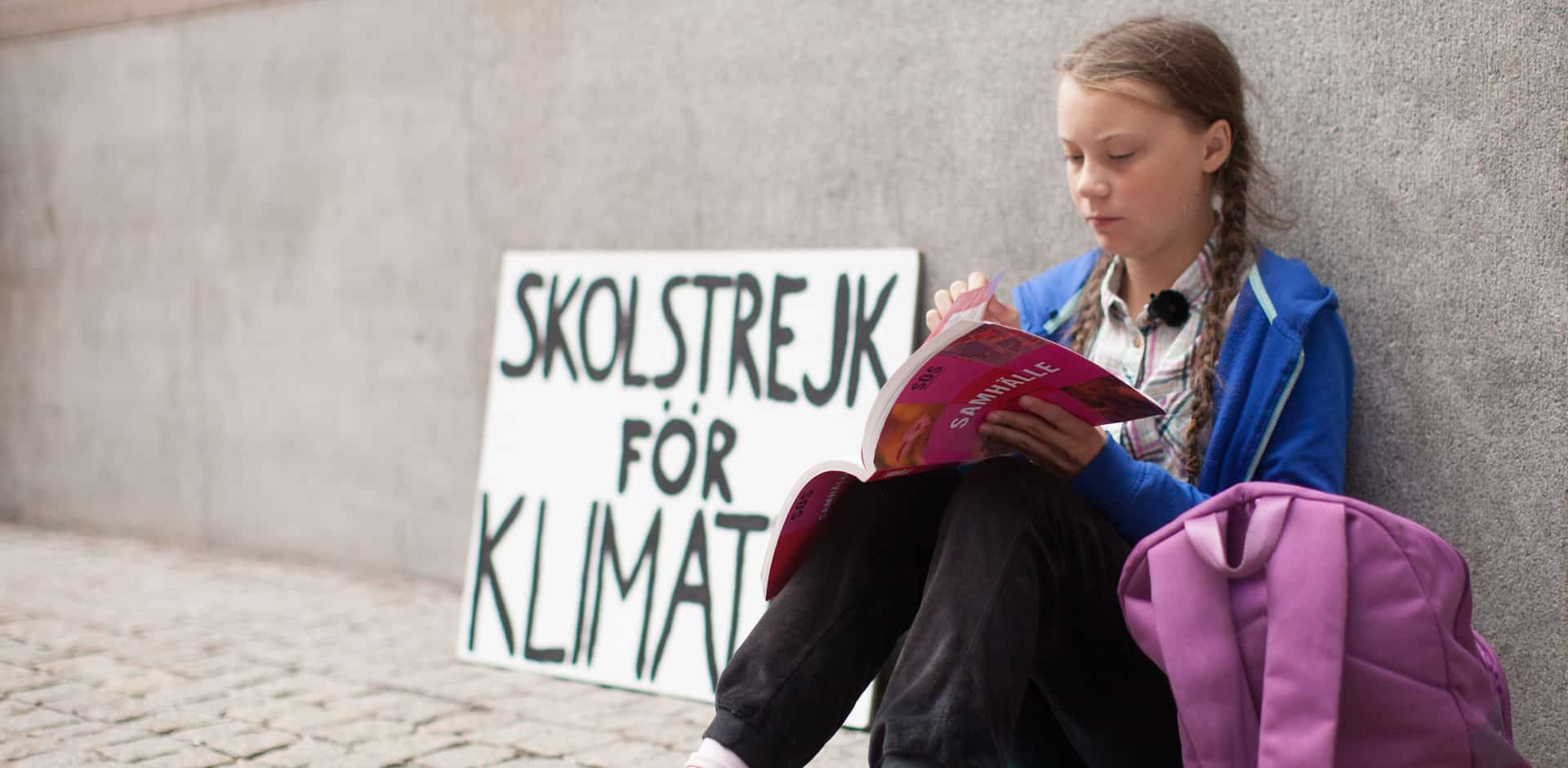 Greta Thunberg on strike